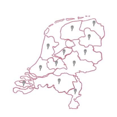 Consulenten in Nederland