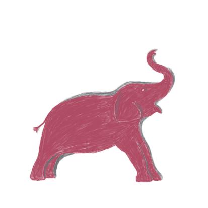 Adoptie-olifantje Galla