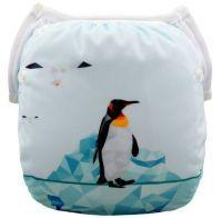 Zwemluier Pinguin