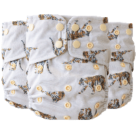 AIO Supreme Lighthouse Neutral Nature Tiger