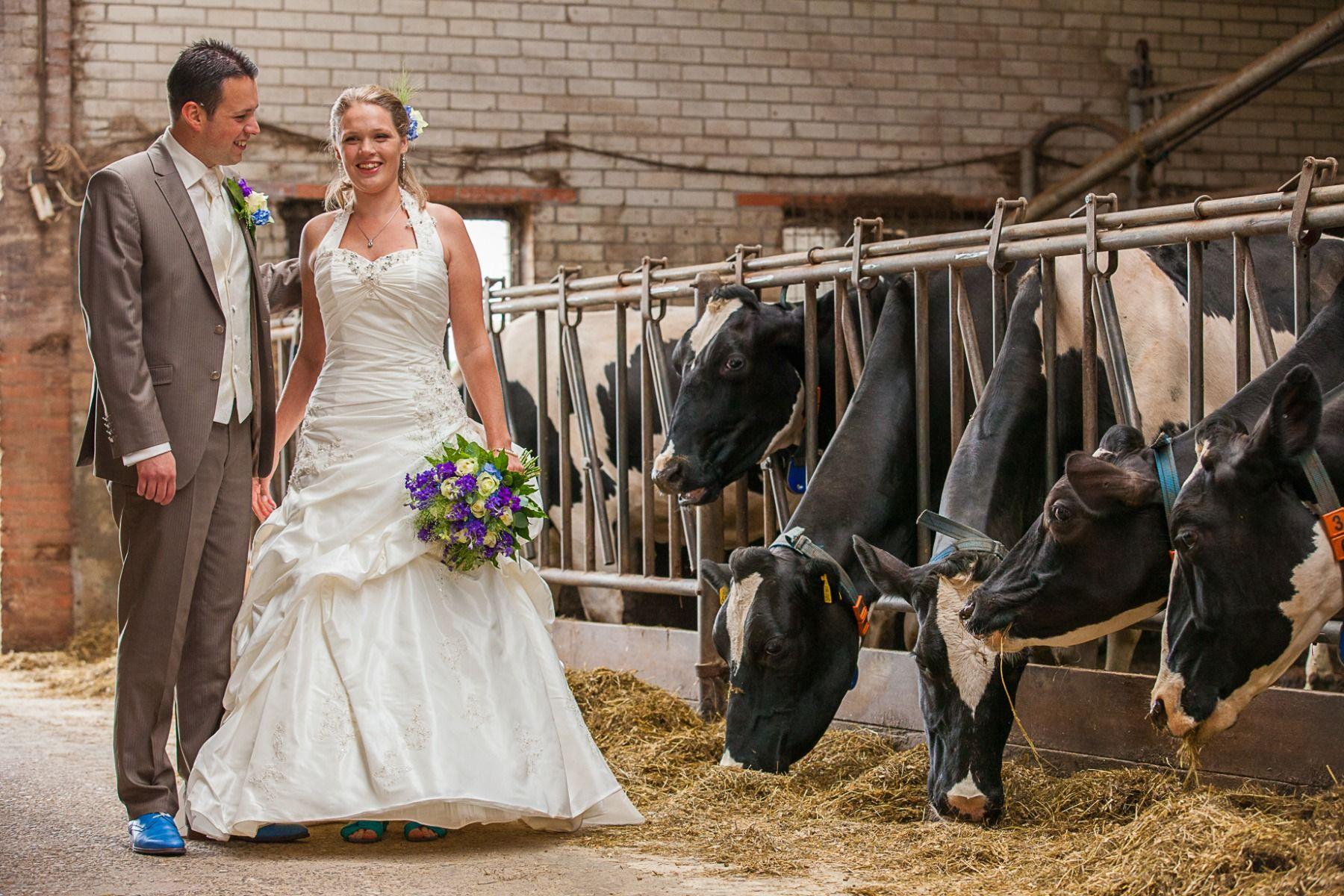 Bruiloft Marco en Ilka
